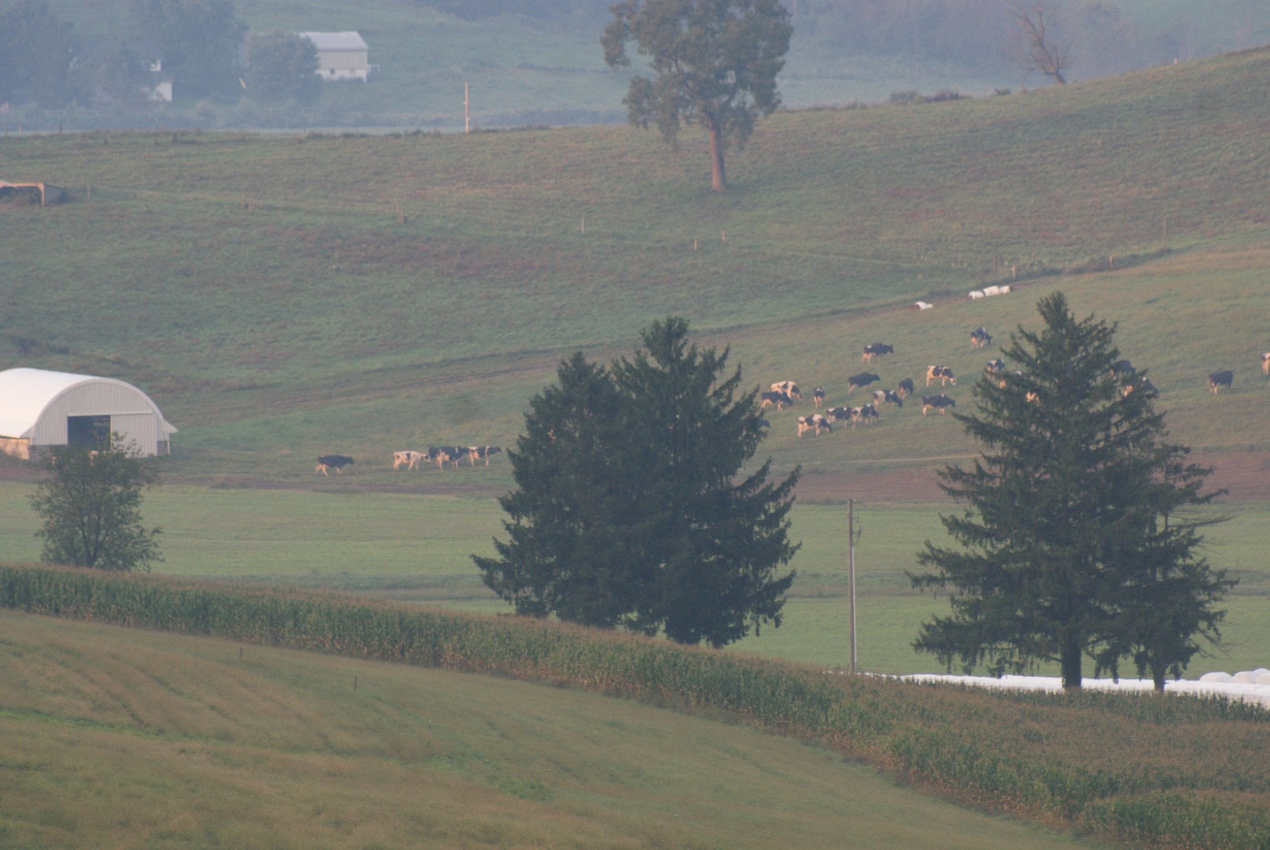 Walnut Creek Ohio 3.JPG
