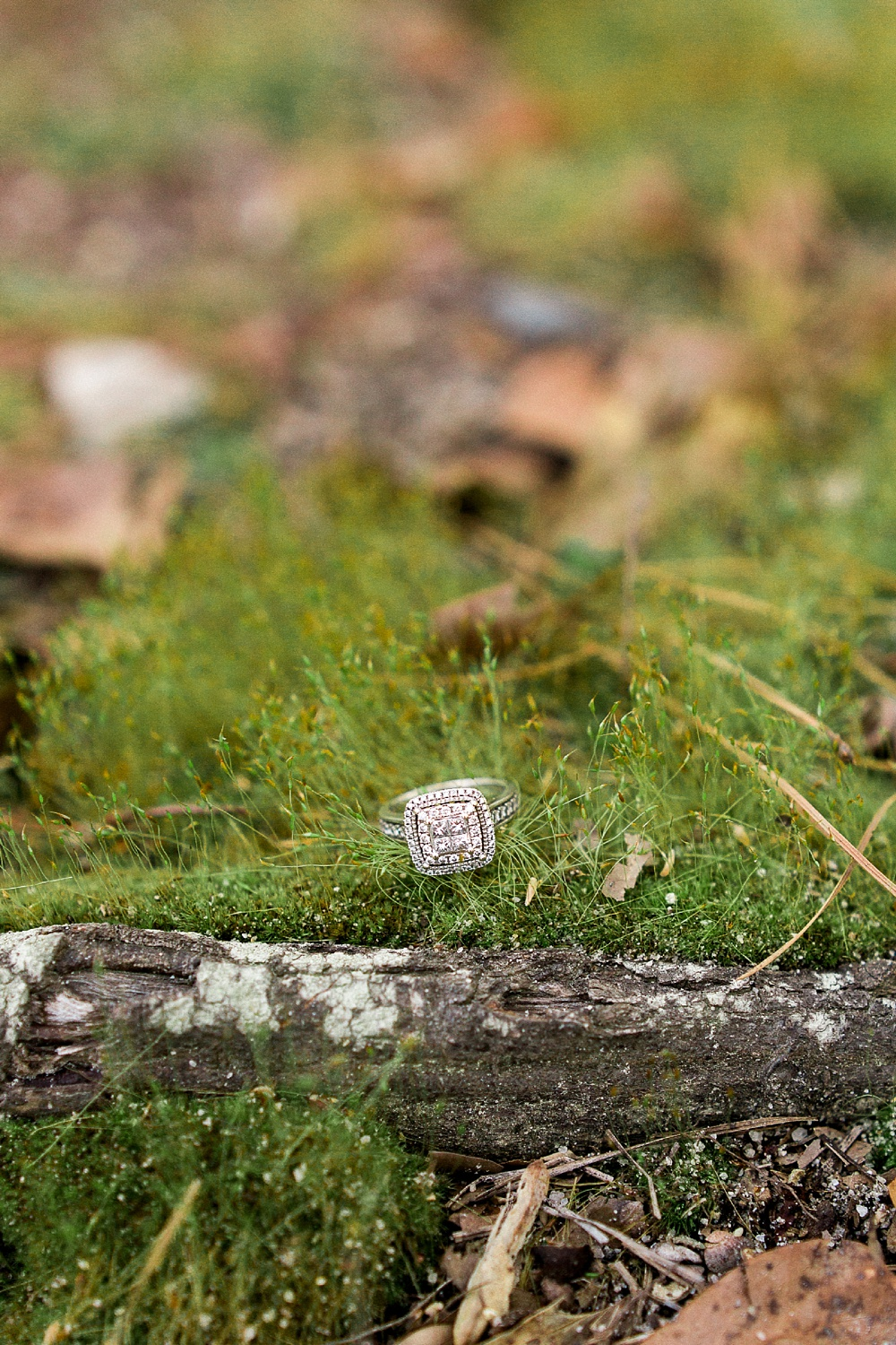 diamond engagement ring sits in a bed of green moss