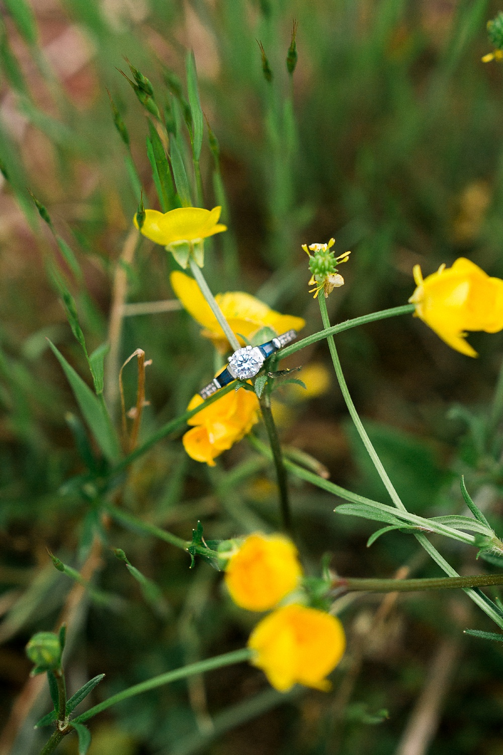 vintage sapphire engagement ring rests on spring buttercups