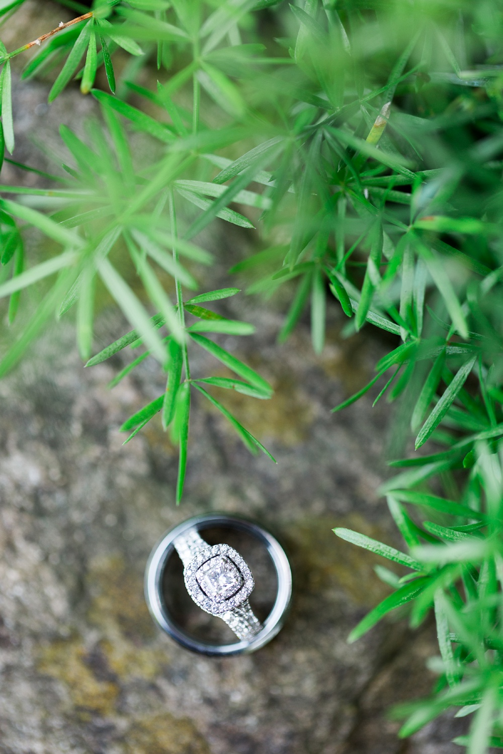 wedding rings in a garden on a stone