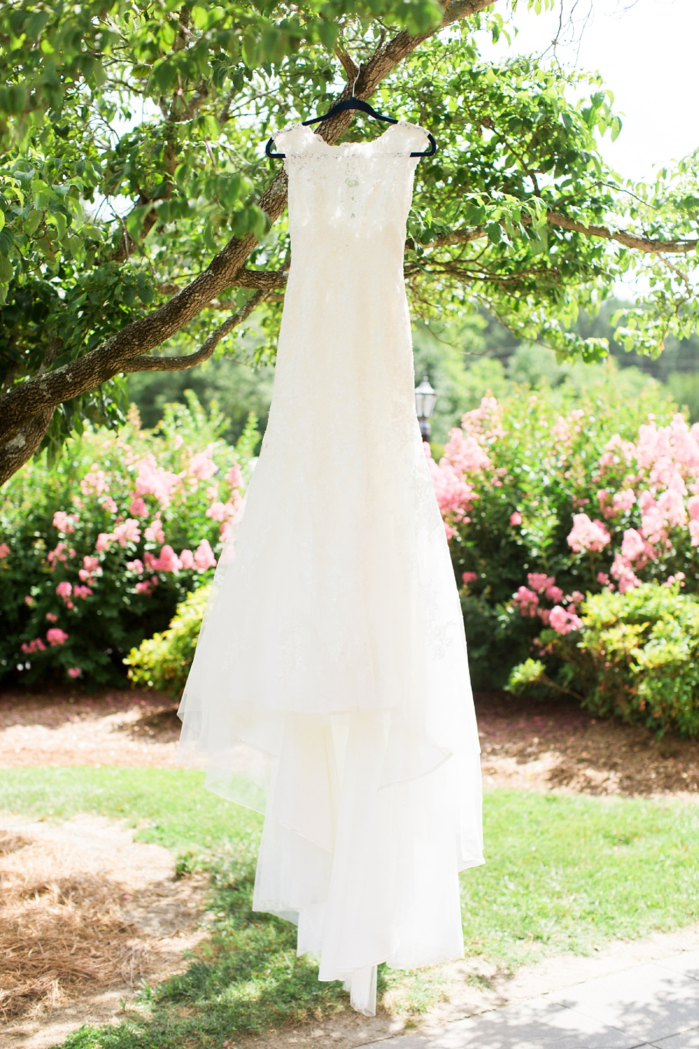 bridal gown hangs from a dogwood tree
