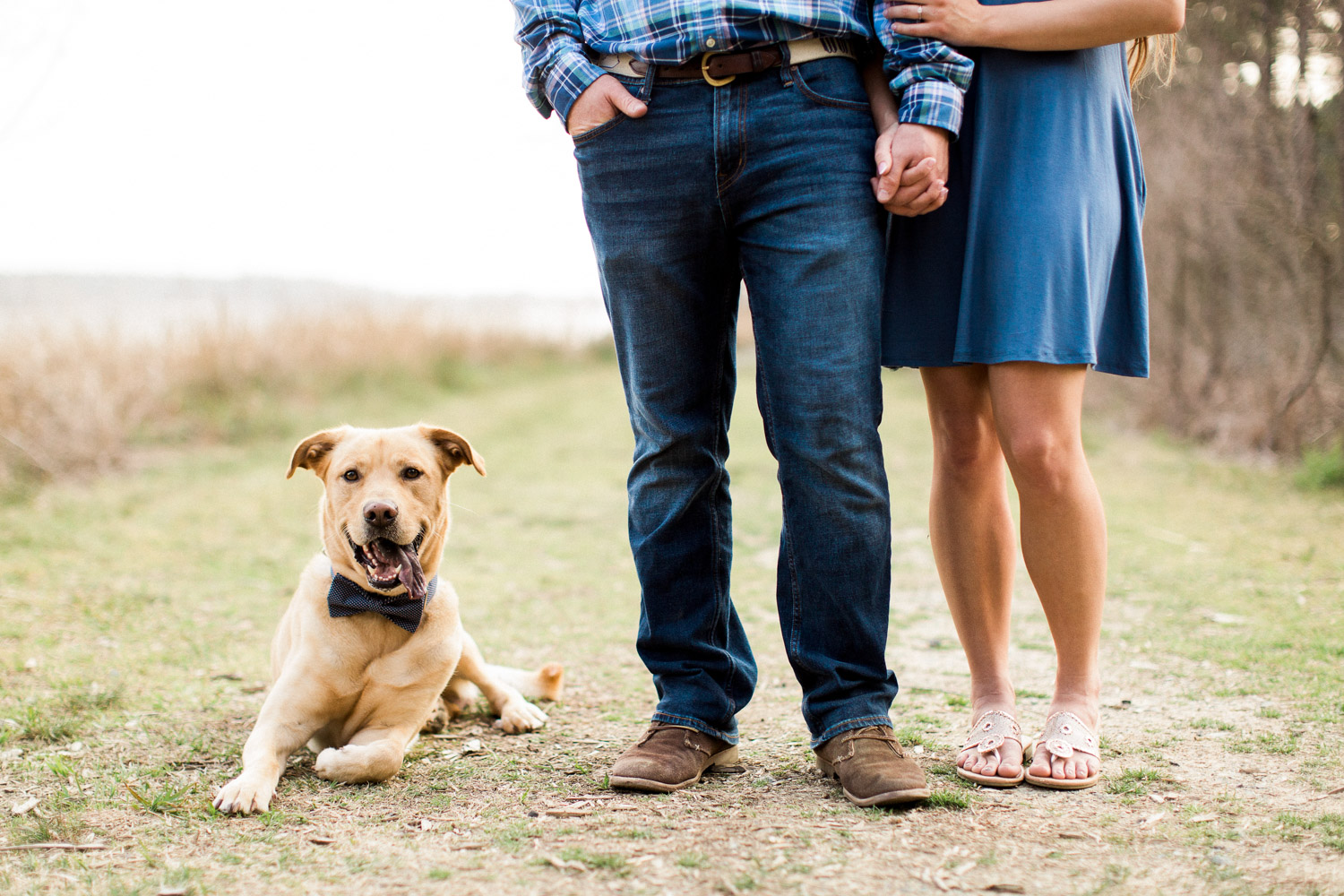 Dog sits by owners feet at New Hill NC Engagement session