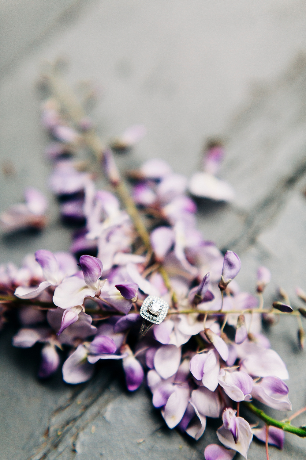 engagement ring nestled in fresh wisteria blooms