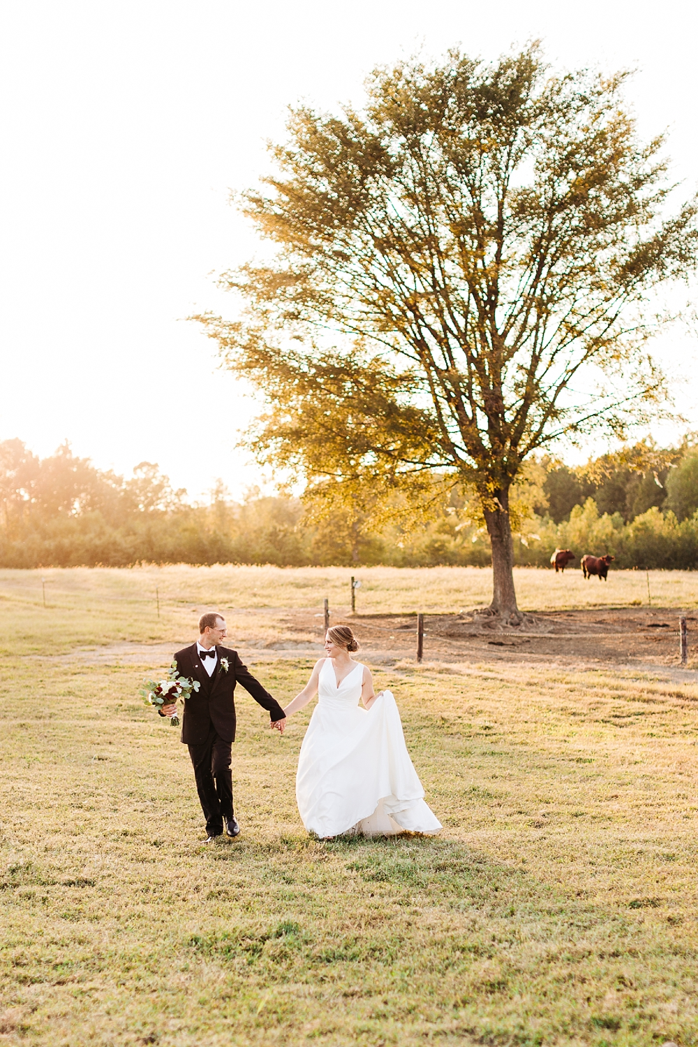 bride and groom walk through a pasture at sunsest