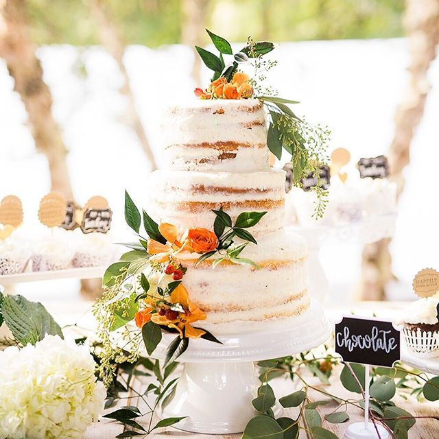 Just another beautiful wedding cake - it was absolutely as good as it looks! . . . . . #durhamweddingphotographer #raleighphotographer #raleighweddings #northcarolinaweddingphotographer #thecakeisalie #weddingcakedesign #prettycakes #tooprettytoeat #highgrovewedding #fuquayvarinaweddingphotographer #fuquayvarinaweddings #ncweddingphotographer #northcarolinaweddingphotographer #ncweddings #rachaelbowmanphotography #chapellhillweddingphotographer #southernbrideandgroom #southernbride #ruffledblog #madewithmastin #wallaceweddingphotographer #easternncweddings #winstonsalemweddingphotographer #clarksvilleweddingphotogapher #virginiaweddingphotographer #brideandgroom #ohwowyes shot for @meganmoralesphoto
