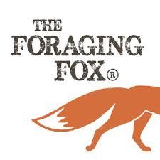 foragingfox.jpeg