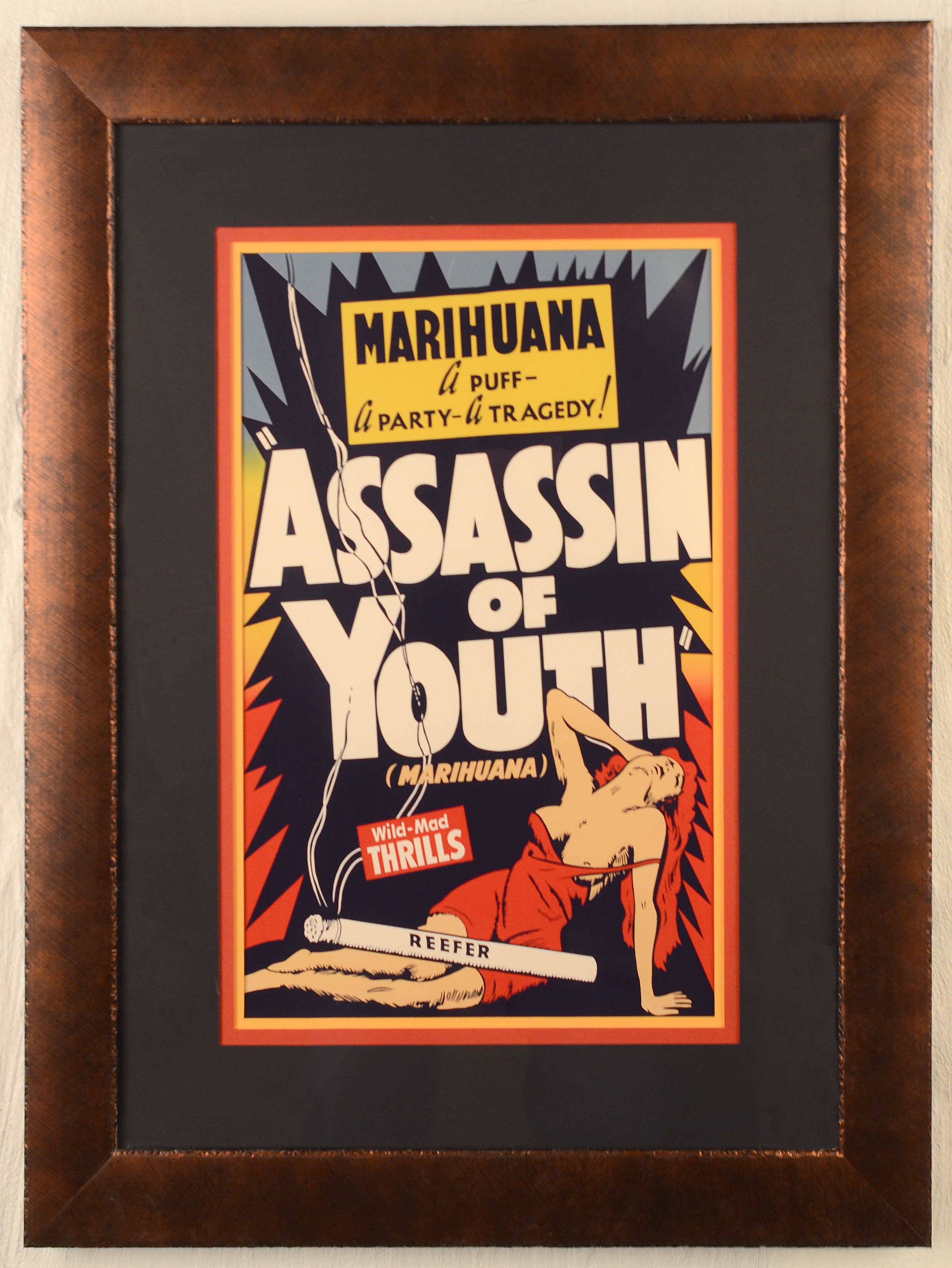 Assassin-of-Youth-Poster-6282.jpg