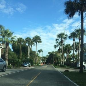 Apalachicola    Florida Private Detectives