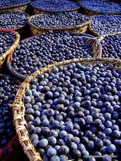 http://blogdoedvanbrandao.blogspot.com/2011/10/acai-e-danado-de-bom-e-danado-de.html