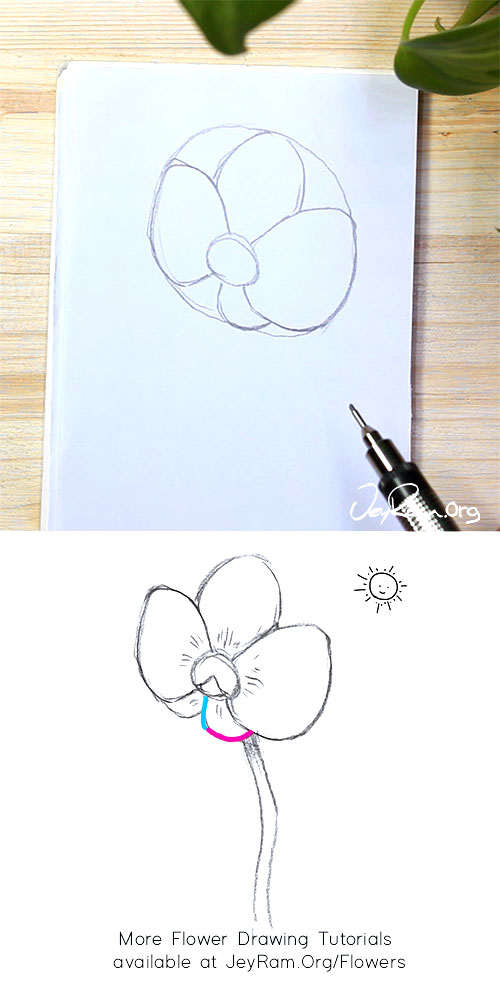 How to Draw an Orchid Flower Step by Step by JeyRam #Orchid #Orchids #flower #drawing #tutorial