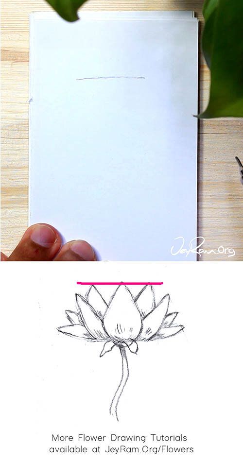 How To Draw A Lotus Step By Step Jeyram Art