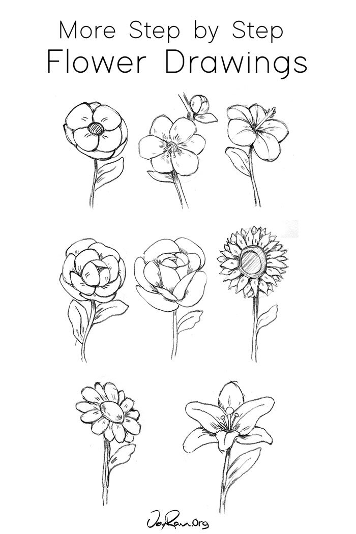 Learn how to Draw Flower with these Step by Step Tutorials #flowers #drawing #beginner #stepbystep