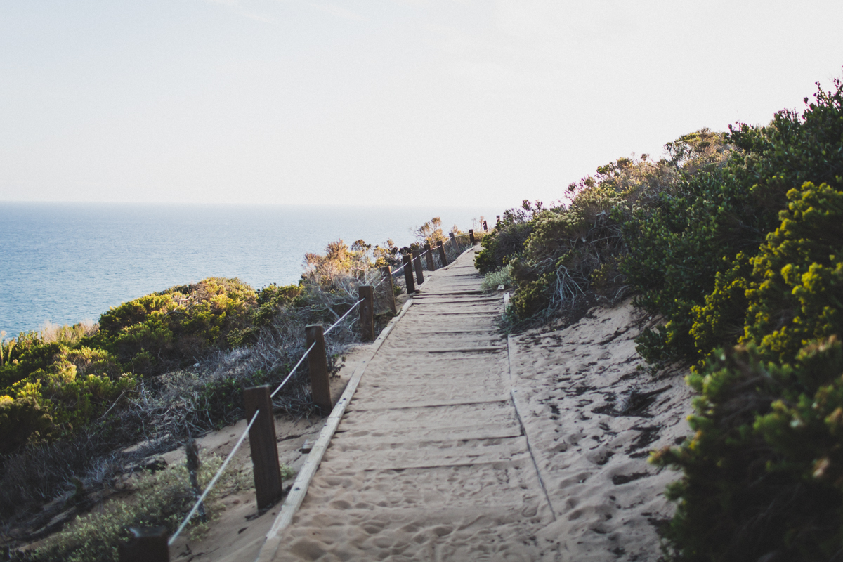Malibu-Engagement-Photography-Los-Angeles-Wedding-Photographer-2.jpg