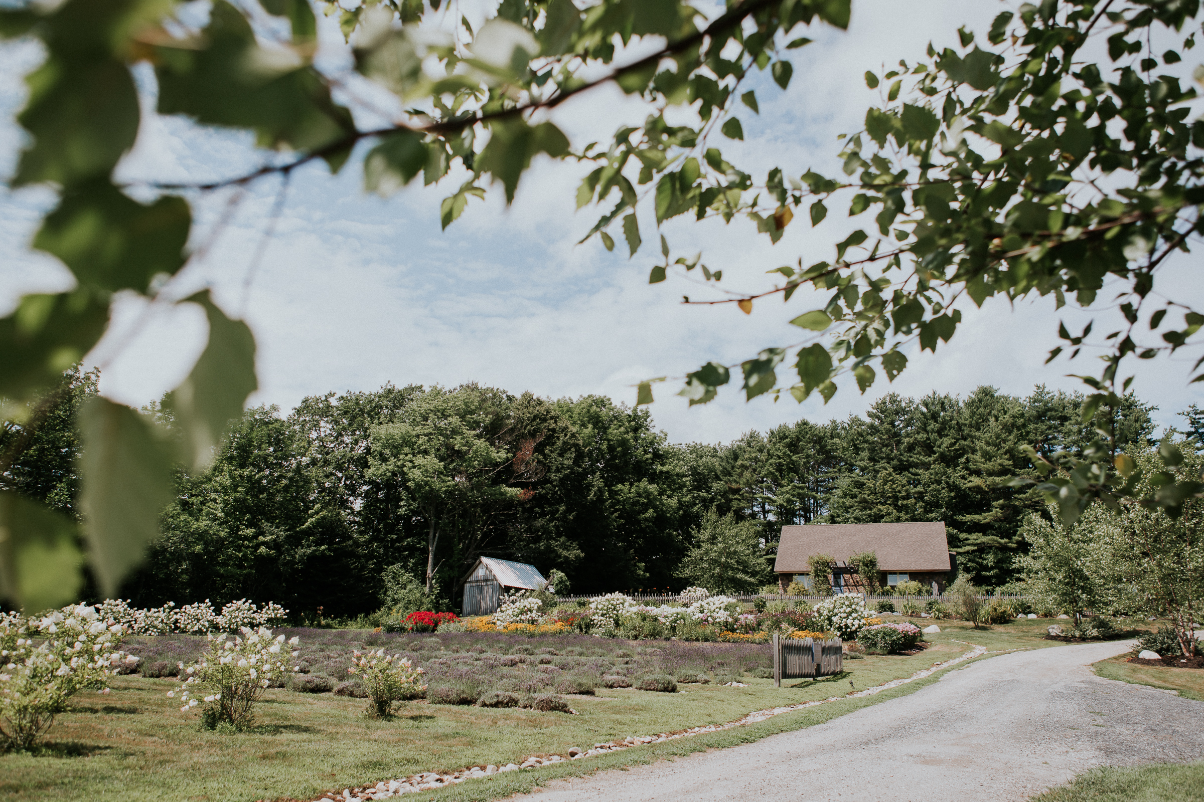 Marianmade-Farm-Wiscasset-Maine-Fine-Art-Documentary-Wedding-Photographer-Elvira-Kalviste-Photography-1.jpg