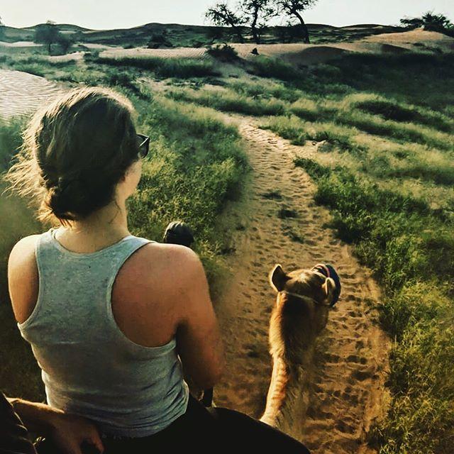Beautiful views ahead @ritzcarltonalwadidesert 😍 #marriottintlmea #rcmemories