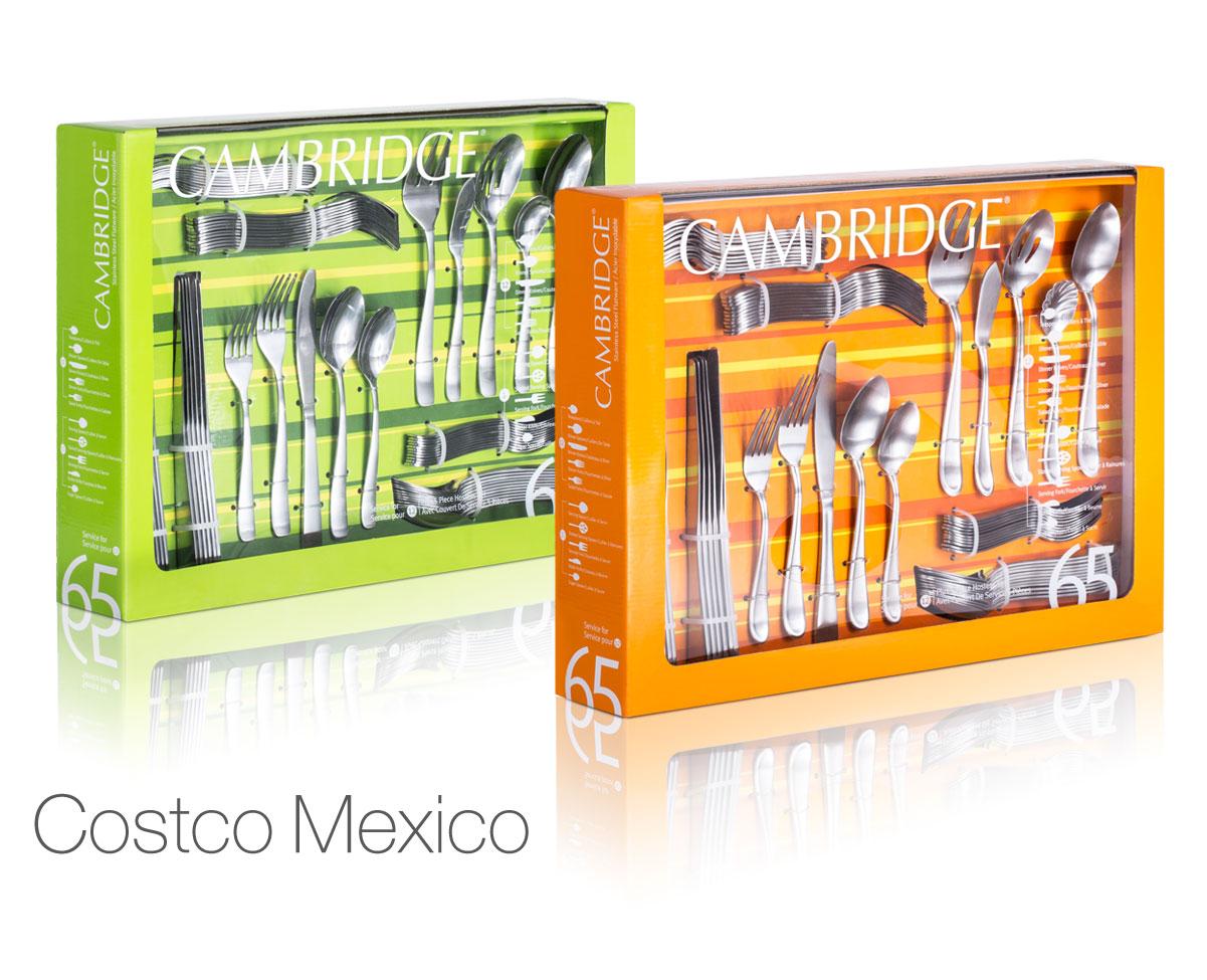 Work_Cam_Costco-Mexico.jpg