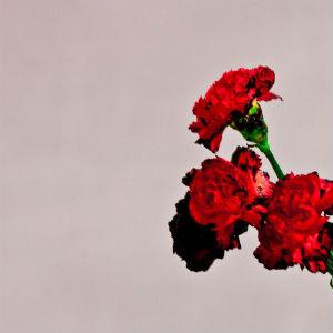 John Legend •  Love In The Future   Mixer / Engineer