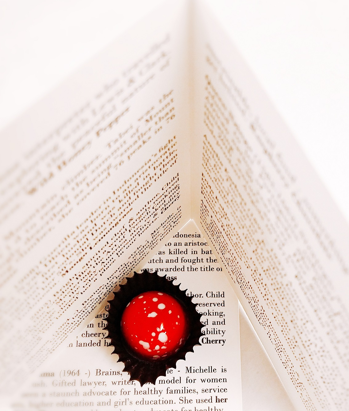 Booklet with red bonbon - resized.jpg