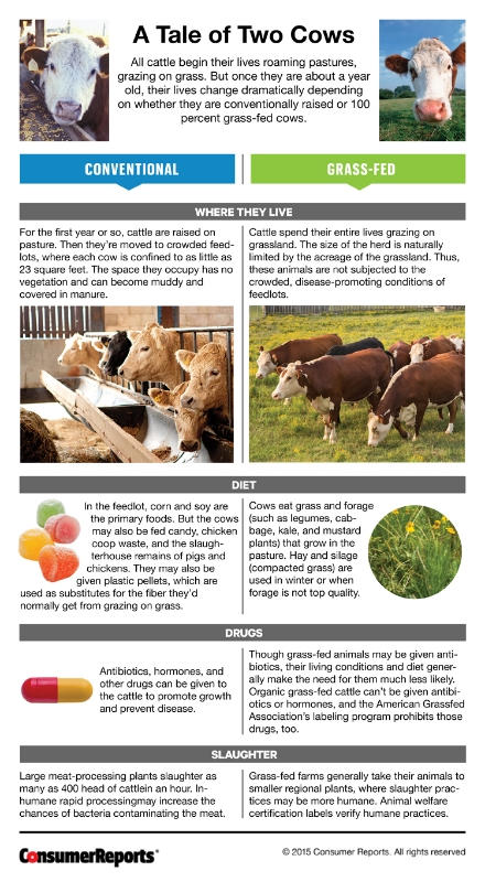 tale of two cows