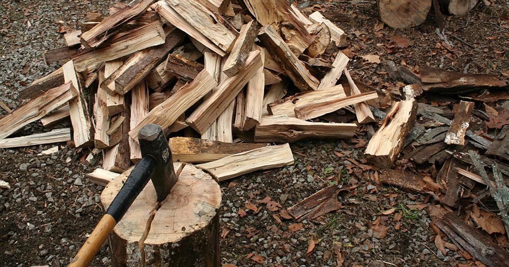 splitting-hickory.jpg