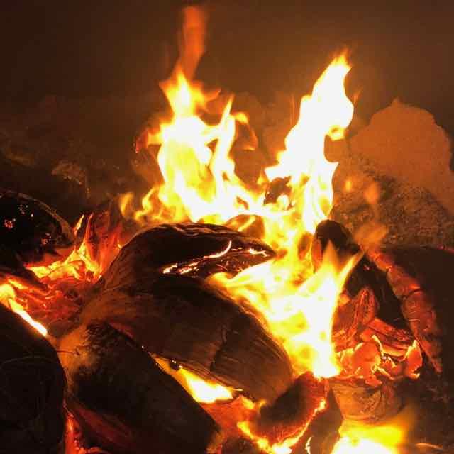 só cocos - se usa só as cascas de cocos para o fogo do secador
