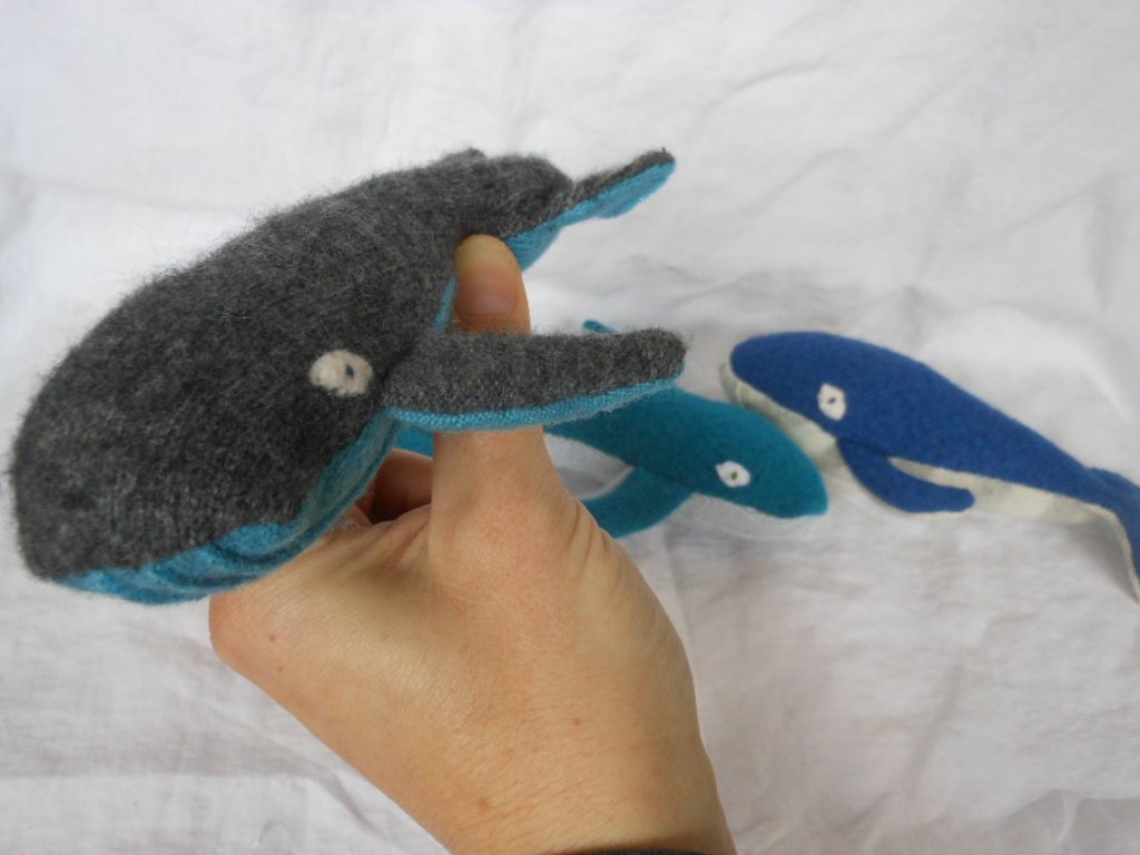baby whales