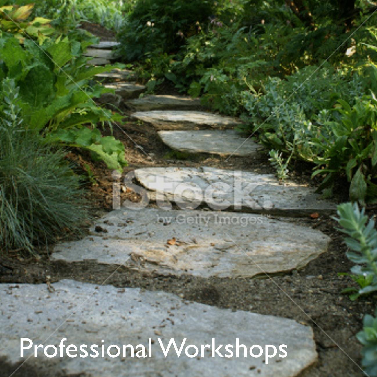 Pro Workshops 1.jpg