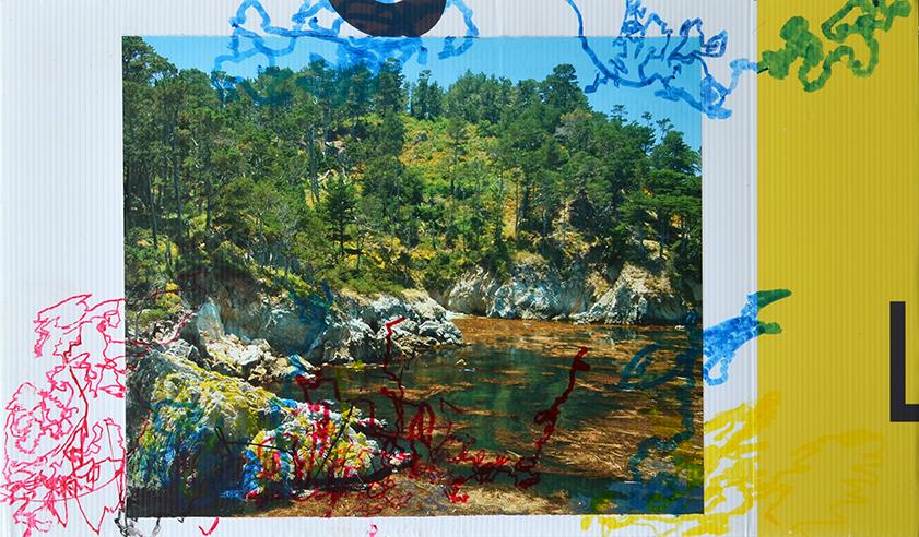 Brenda Whittam - Ray White web.jpg