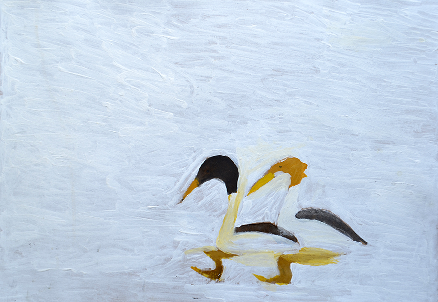 Sunil Kankanagne  Ducks