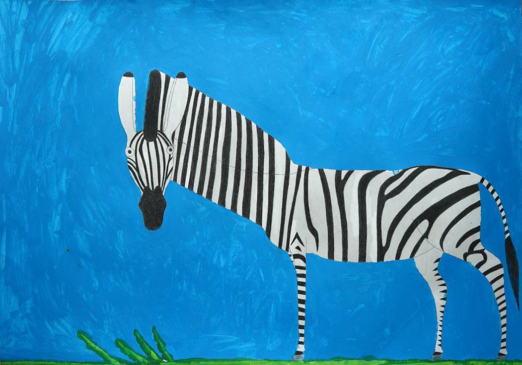 Zebra - Jordan Chow