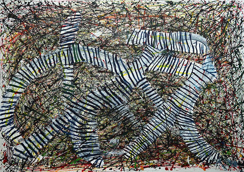 Matthew Tucker - Zebra Snakes web.jpg