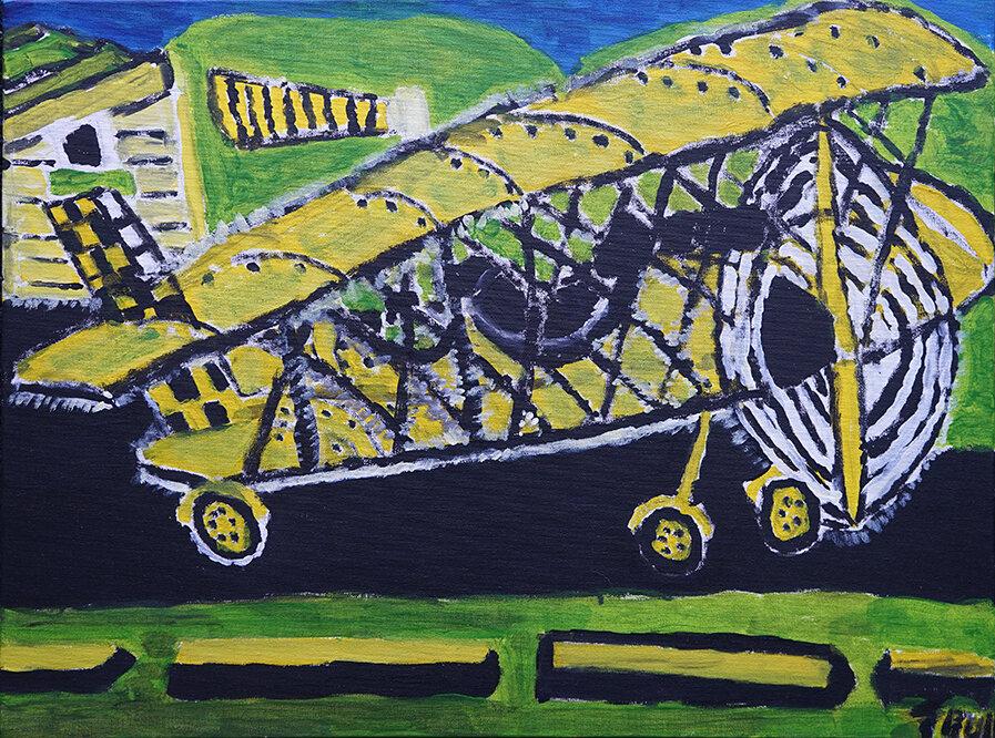 Trevor Bull - Tiger Moth web.jpg