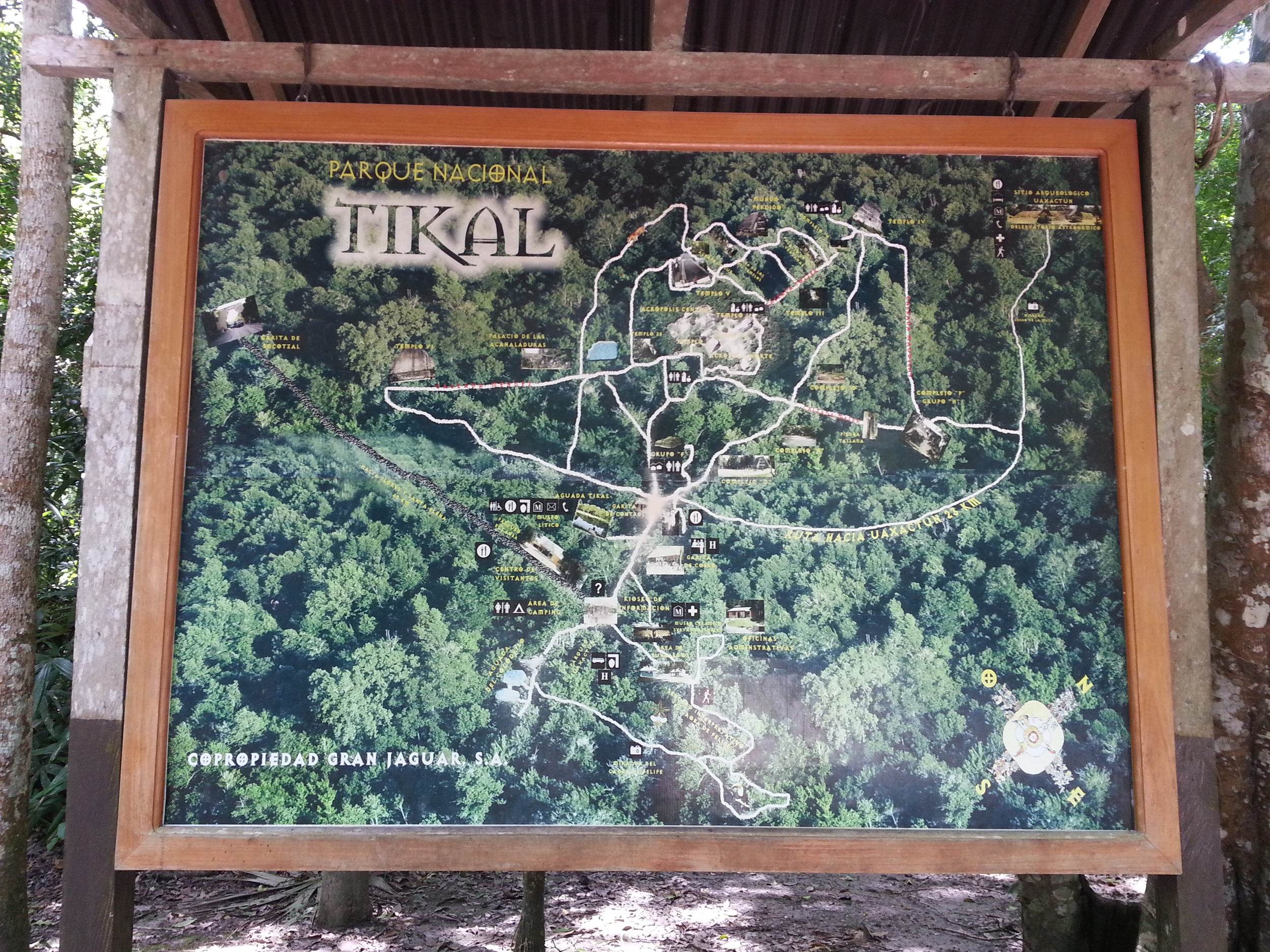Tikal covers a huge area...good walking shoes areessential