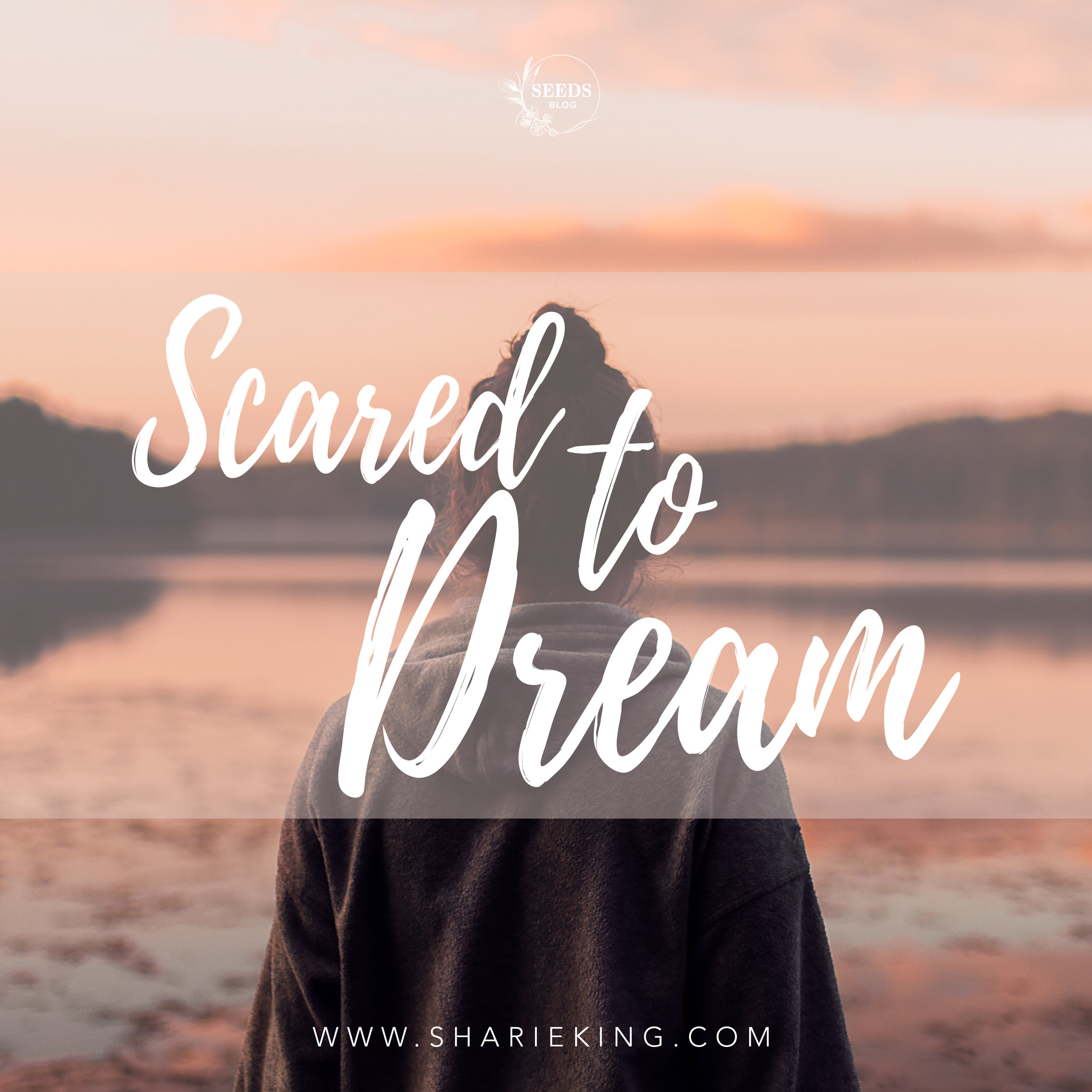 sharie king seeds blog-scared to dream 2019-01.jpg