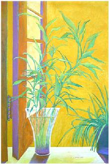 Waterplant by Window by Sandra Maria Estevez