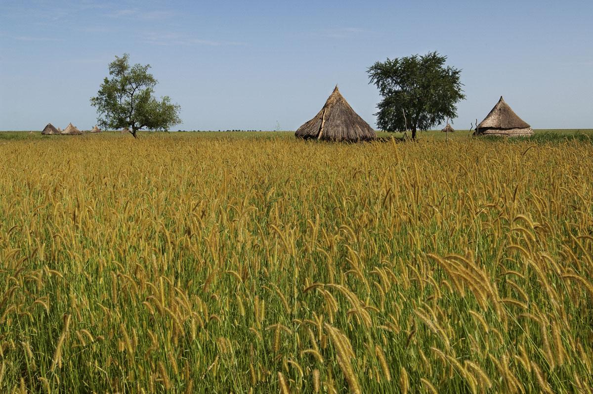 SOUTH SUDAN06.jpg