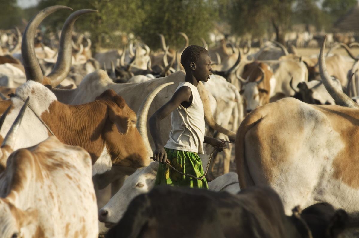 SOUTH SUDAN09.jpg
