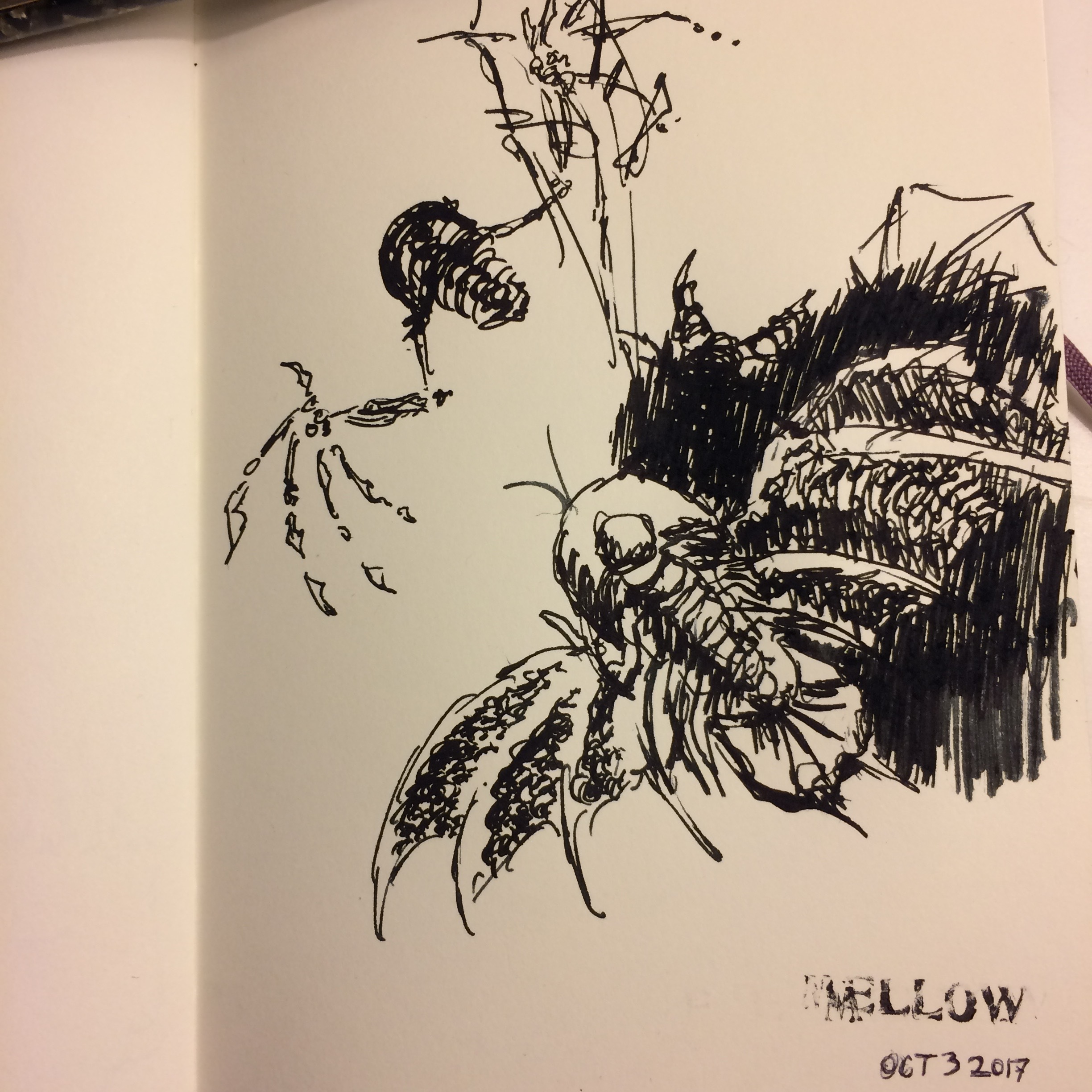 A couple of scribbly winged trilobites.  Uh-oh, these #inktober sketches are tumbling downhill. Maybe less drawing at 1 in the morning after a long day.