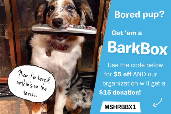 Help us meet our goal of 100 subscriptions and we will raise $1,500!