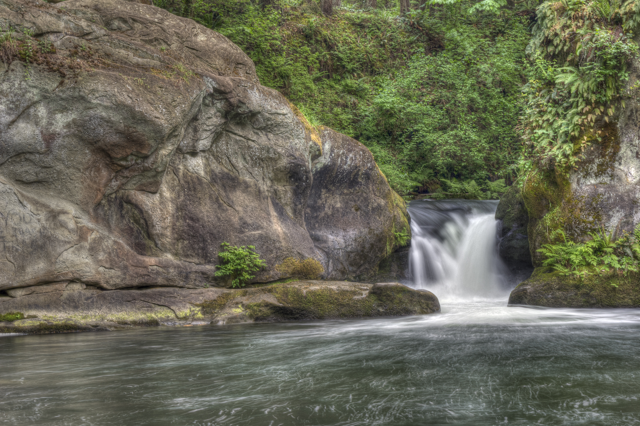 Whatcom Lower Falls