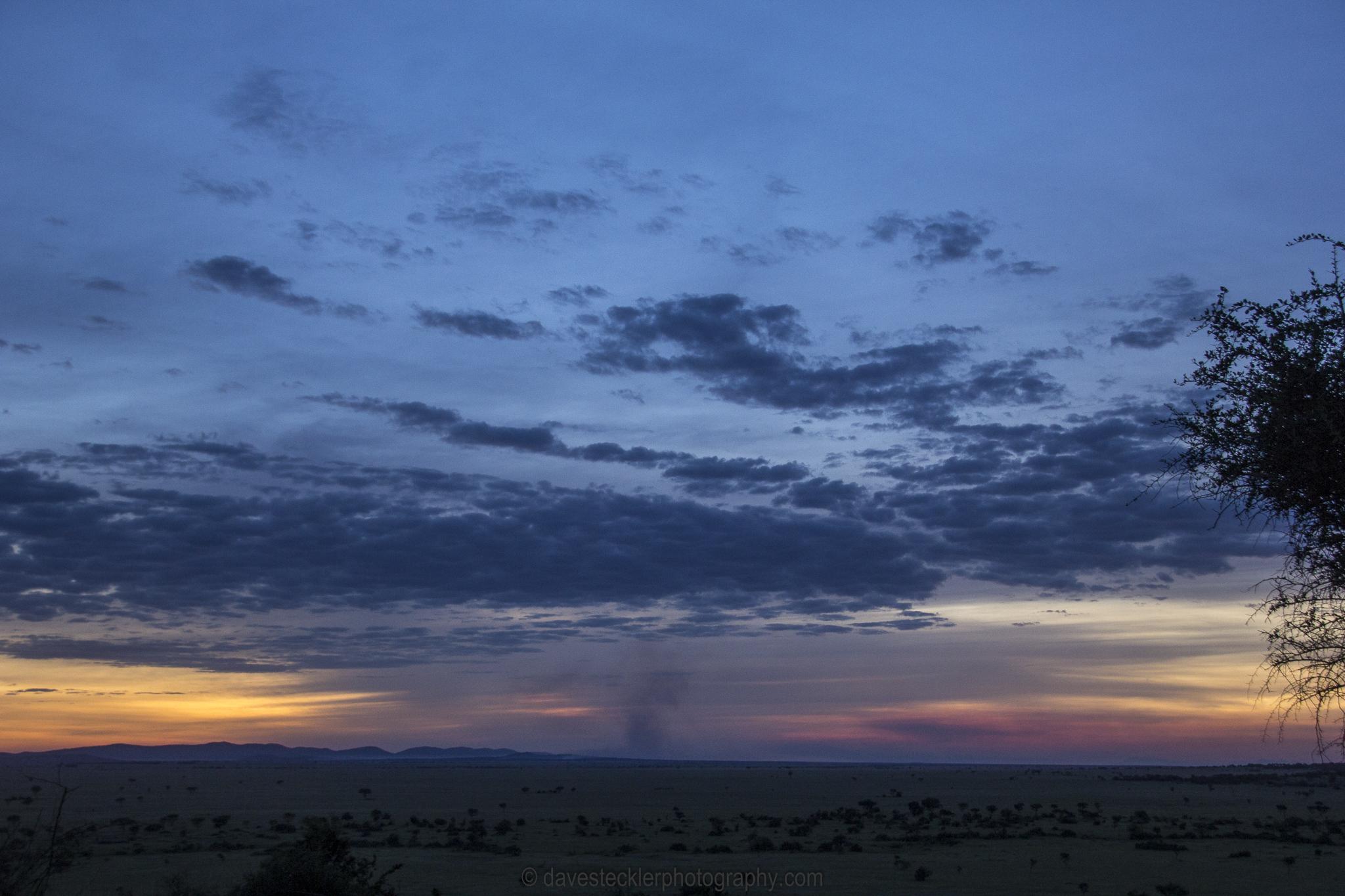 Serengeti Blue Sunset