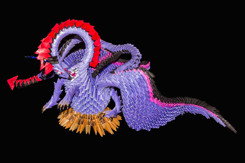 Purple Dragon Front NEW_MG_5397-124.jpg