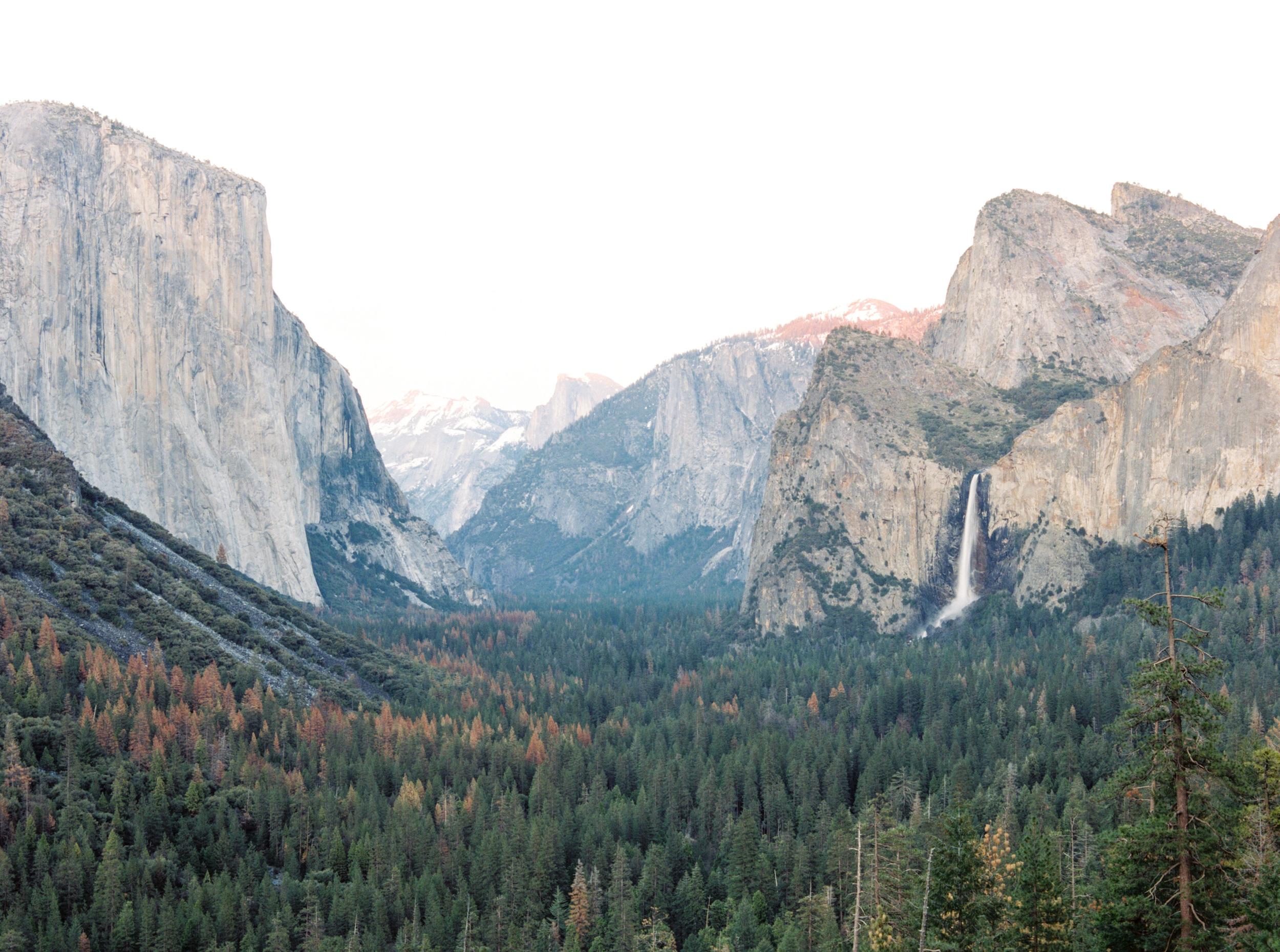 Yosemite_national_park_engagement_shoot_film-58.jpg
