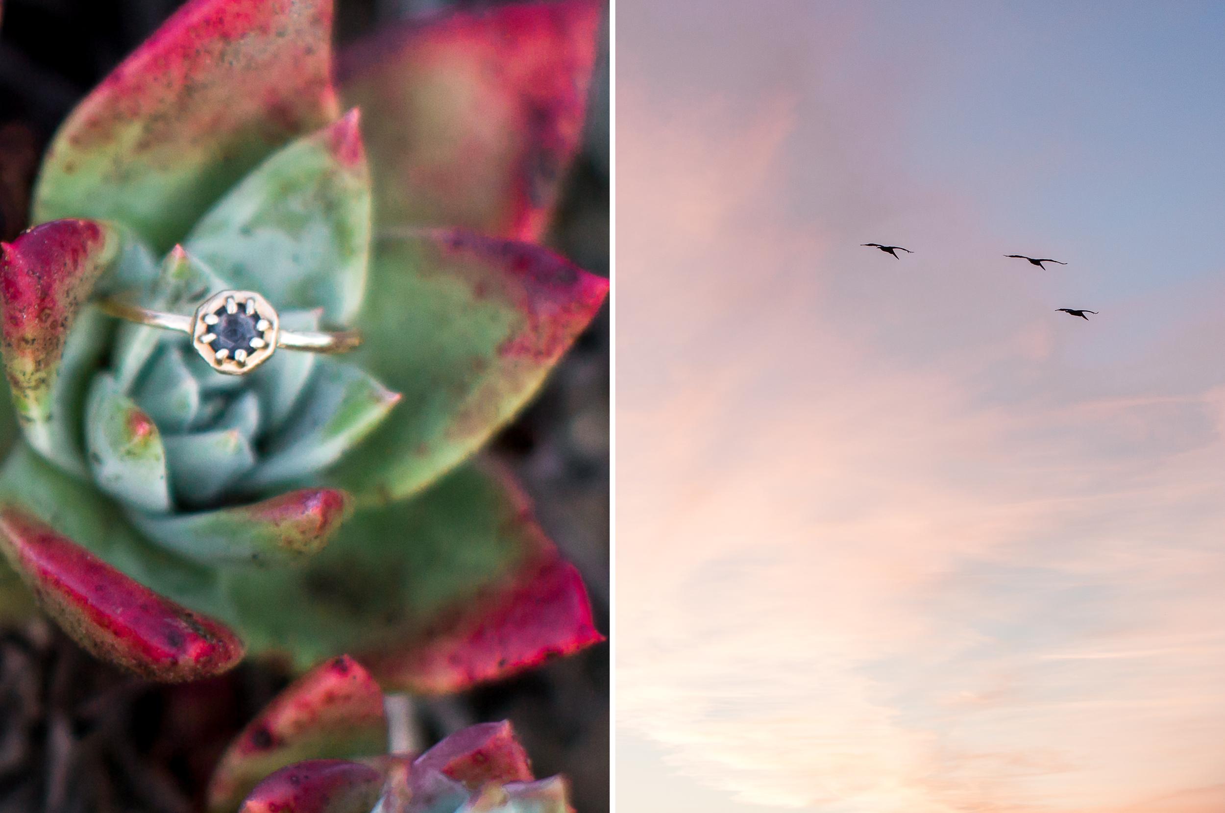 lands-end-san-francisco-engagement-photography