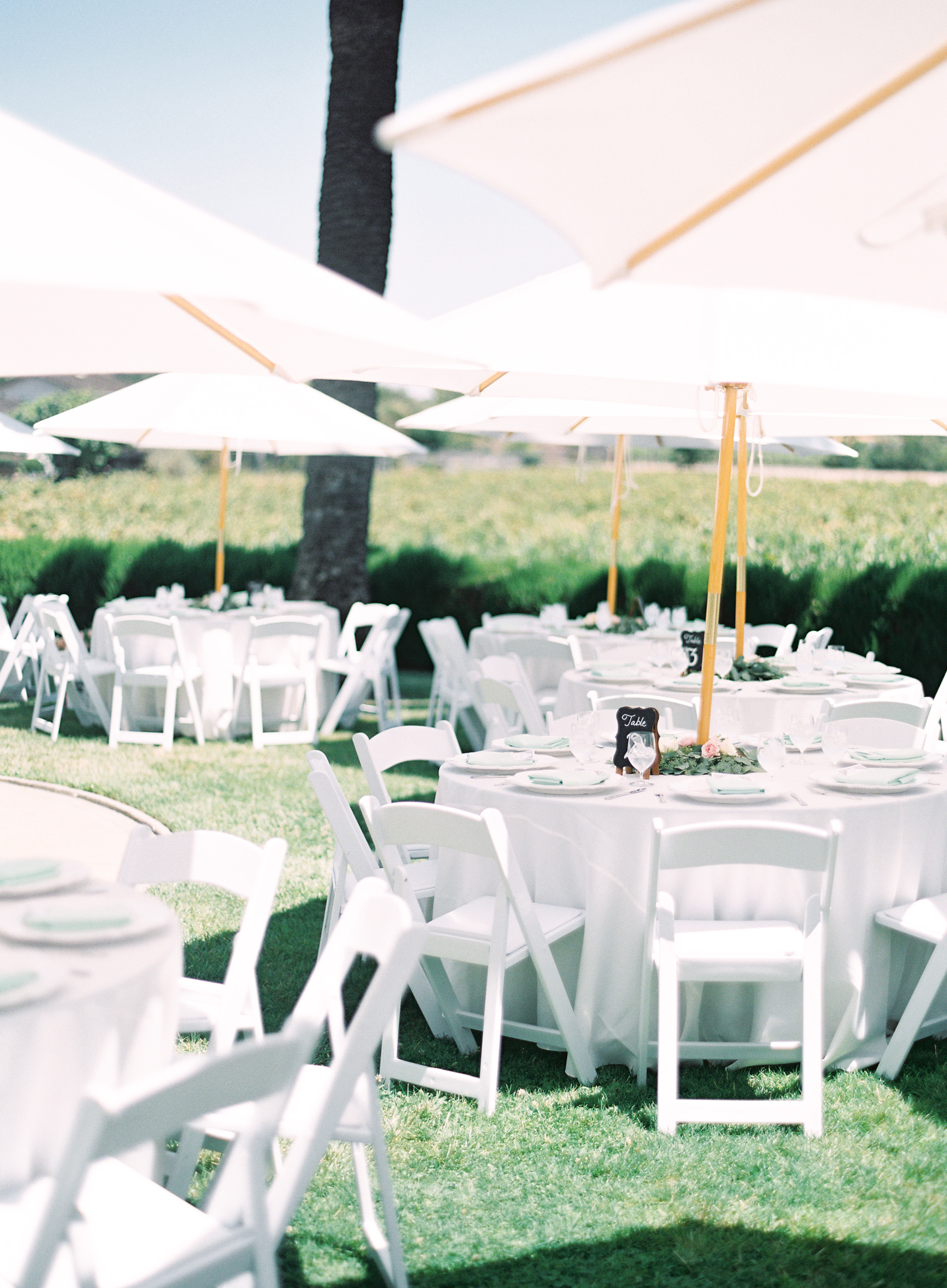 southern-inspired-wedding-at-ravenswood-historic-site-013-7.jpg