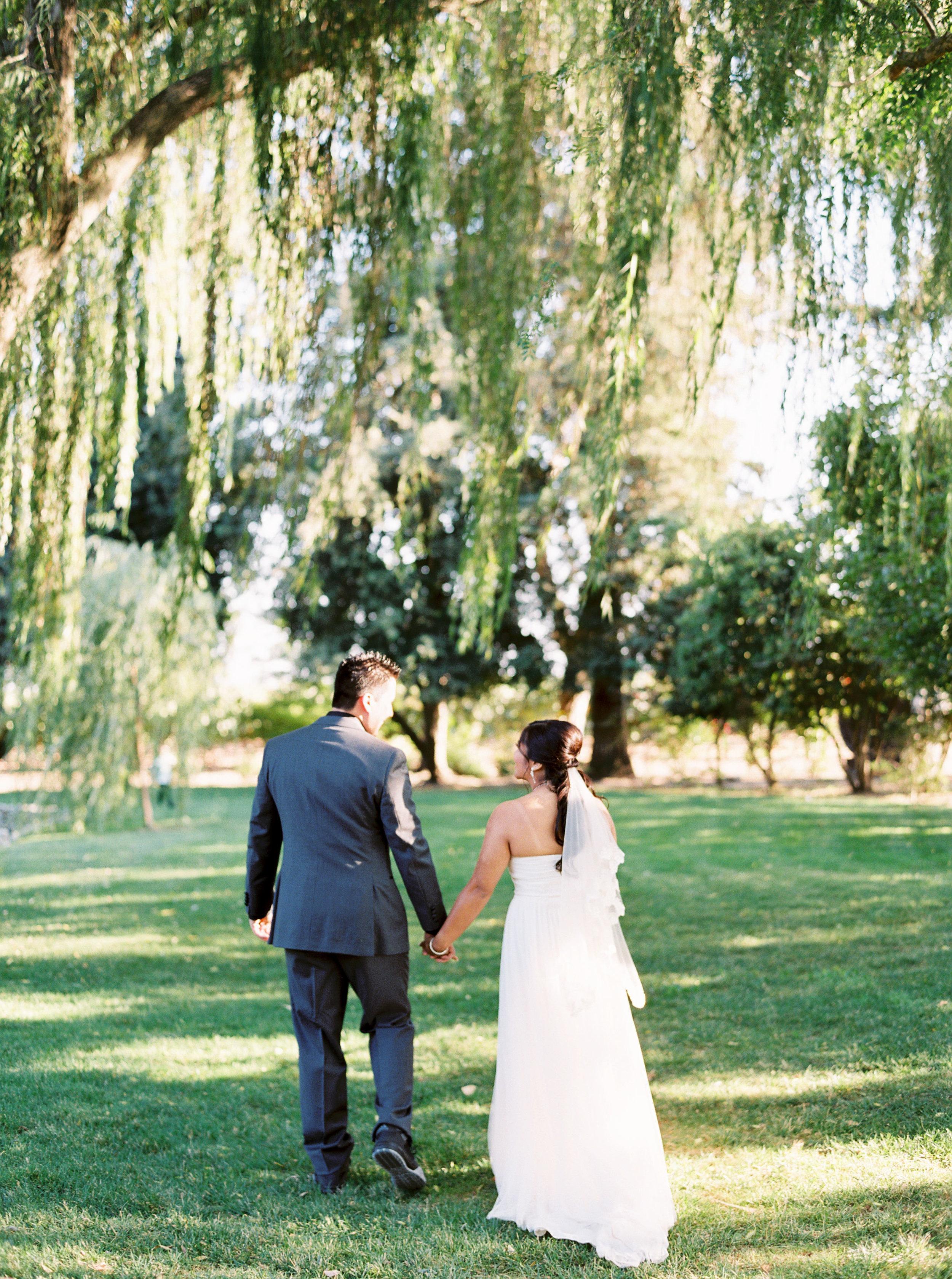 mettler-family-vineyard-wedding-lodi-california.jpg