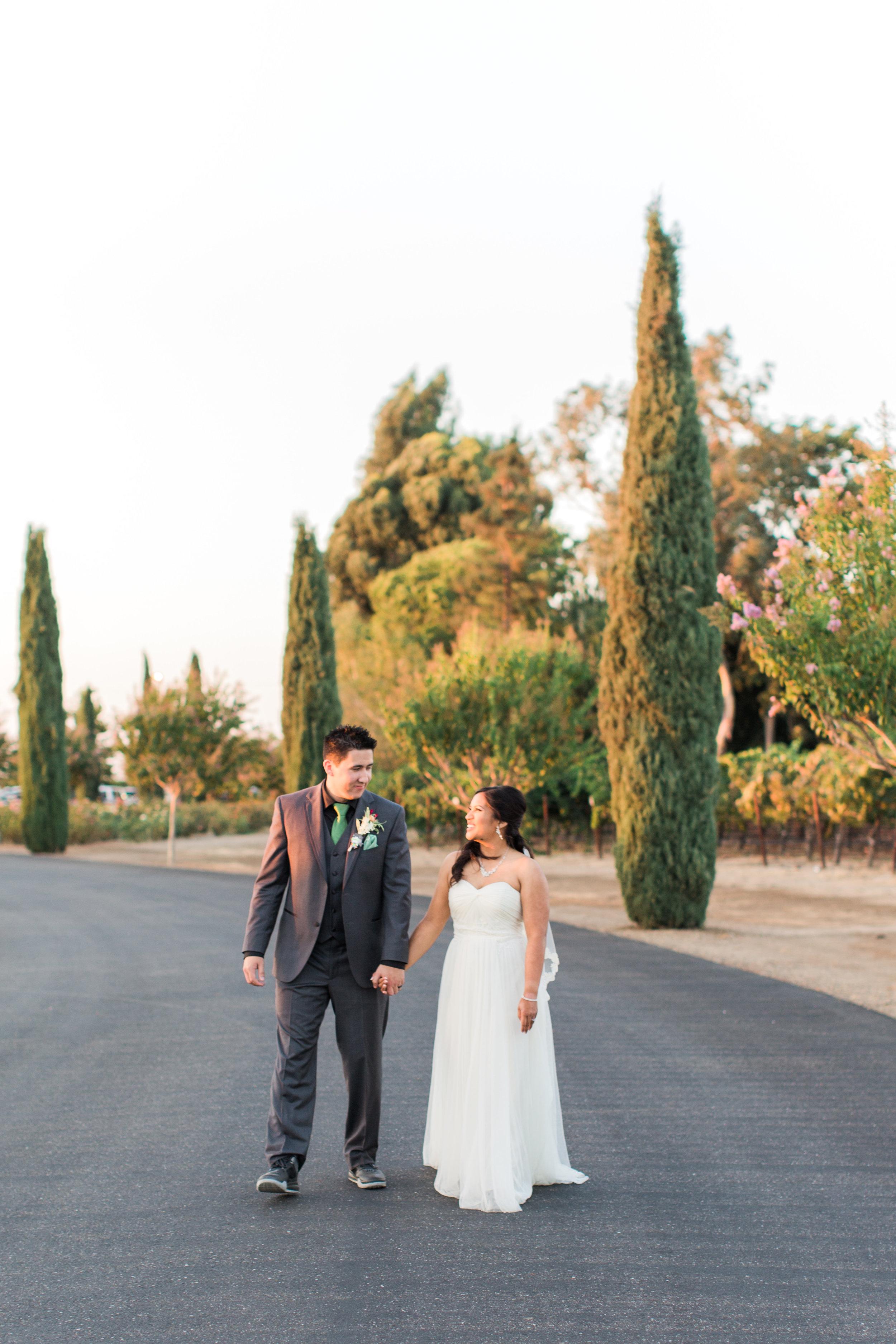 Mettler-family-vineyards-wedding-lodi-california-7618.jpg