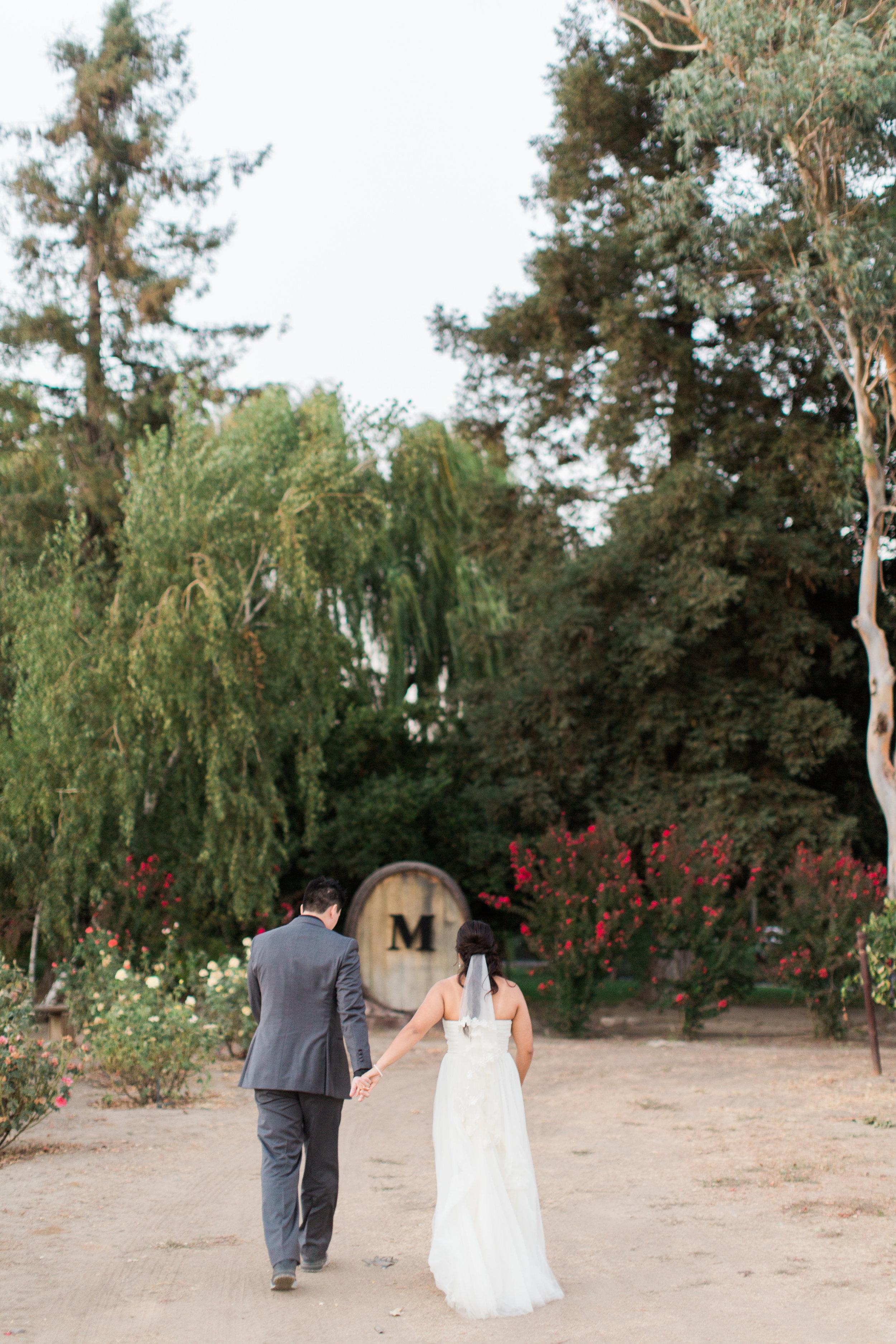 Mettler-family-vineyards-wedding-lodi-california-7715.jpg