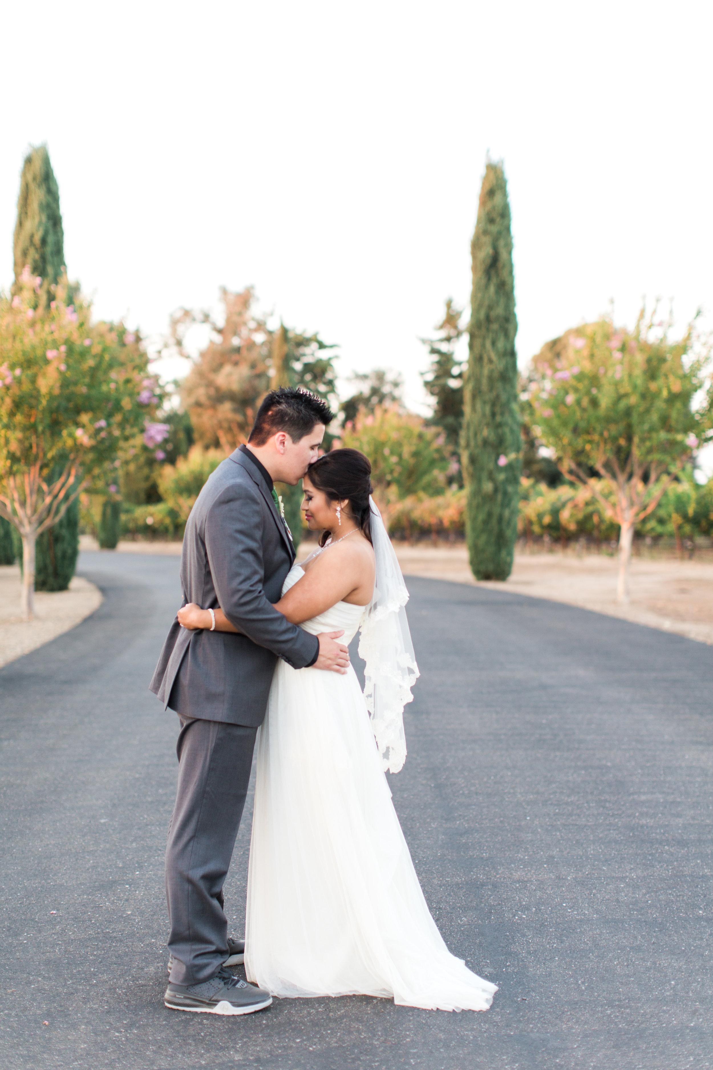 Mettler-family-vineyards-wedding-lodi-california-7638.jpg