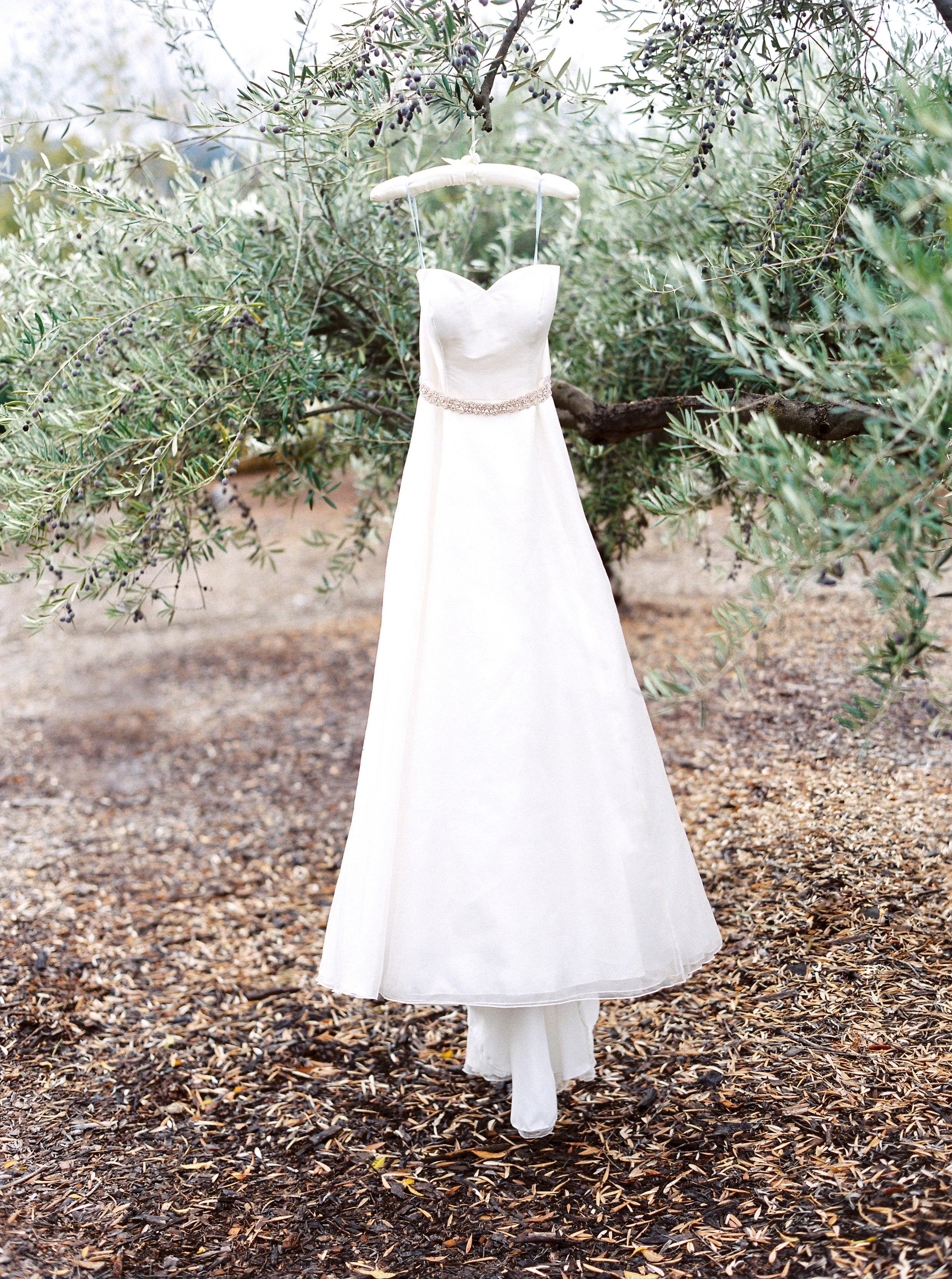 intimate-wedding-at-solage-calistoga-in-napa-186.jpg